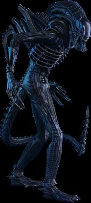 Imagen de Aliens Figura Movie Masterpiece 1/6 Alien Warrior 35 cm